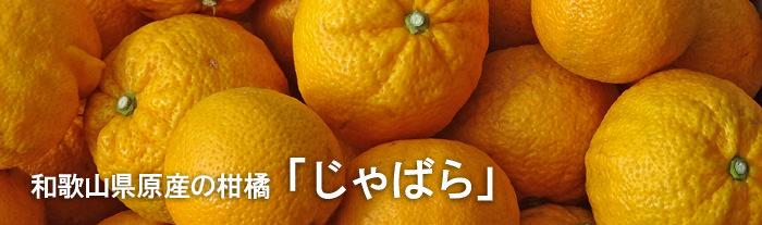和歌山県原産の柑橘「じゃばら」
