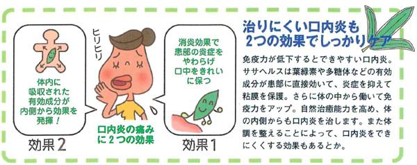 治りにくい口内炎もササヘルスの2つの効果でしっかりケア
