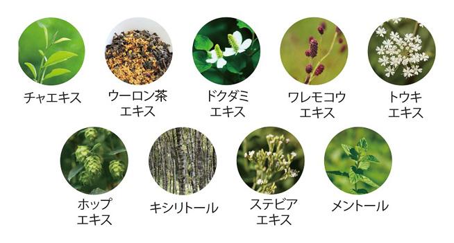 パーフェクトマウスウォッシュ9種類の植物由来成分